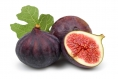 2018: The Year of the … Fig?