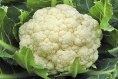 3 Clever Ways to Cook Cauliflower