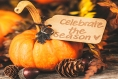 Don't Get Stuffed: Tips for a Lighter Thanksgiving