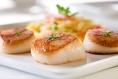 Food Highlight: Scallops