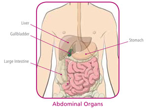 Gallbladder surgery gallbladder disease includes inflammation infection or blockage obstruction of the gallbladder ccuart Gallery
