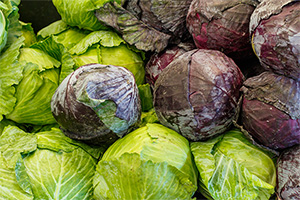 Is Cabbage the New Kale